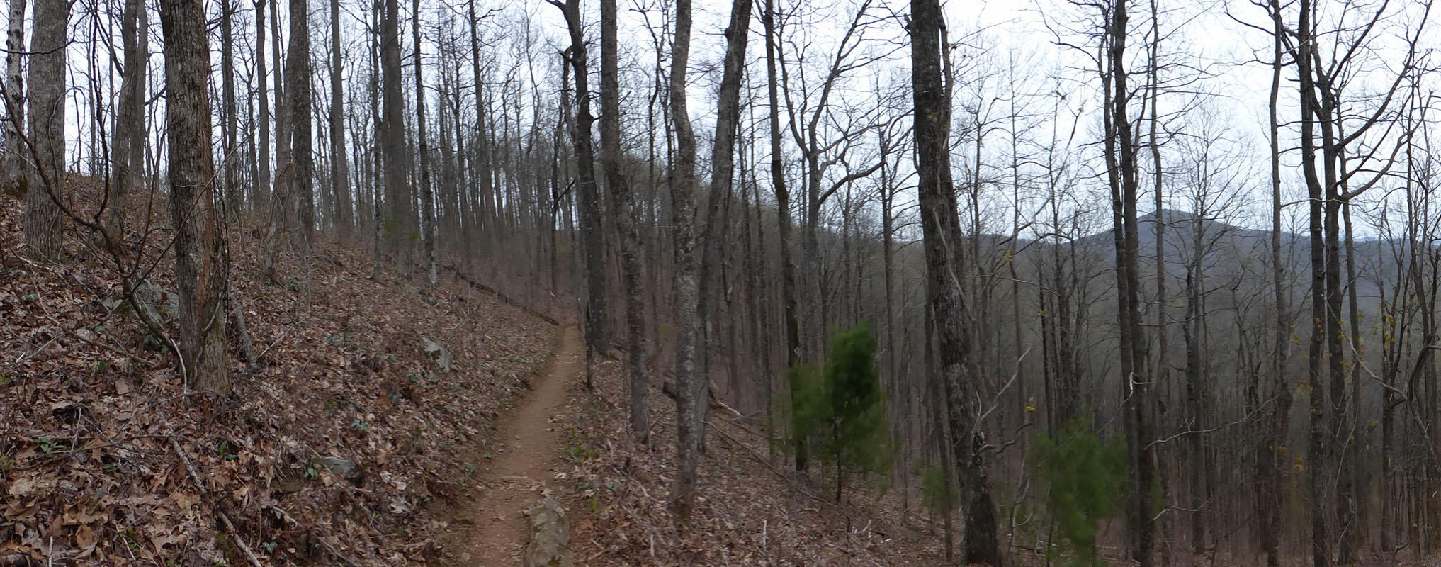 Approach Trail, Georgia