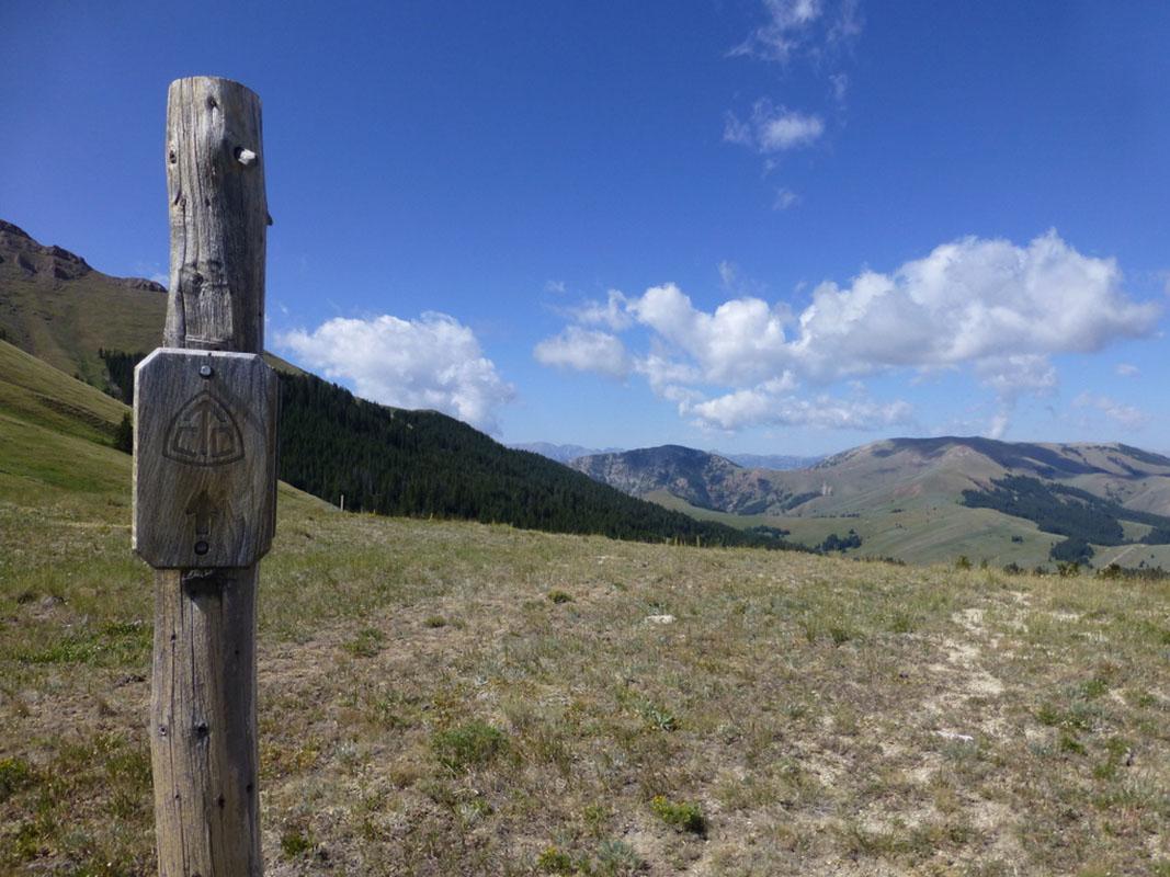 CDT Montana