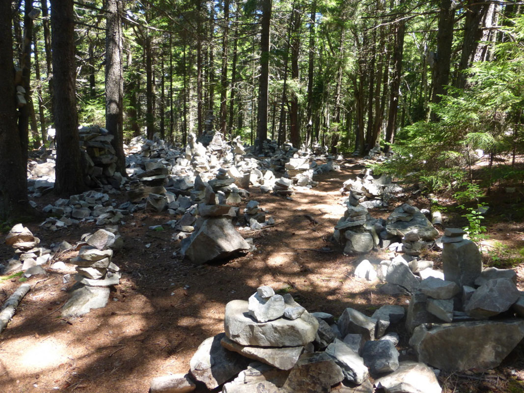 Cairn Garden on the Long Trail