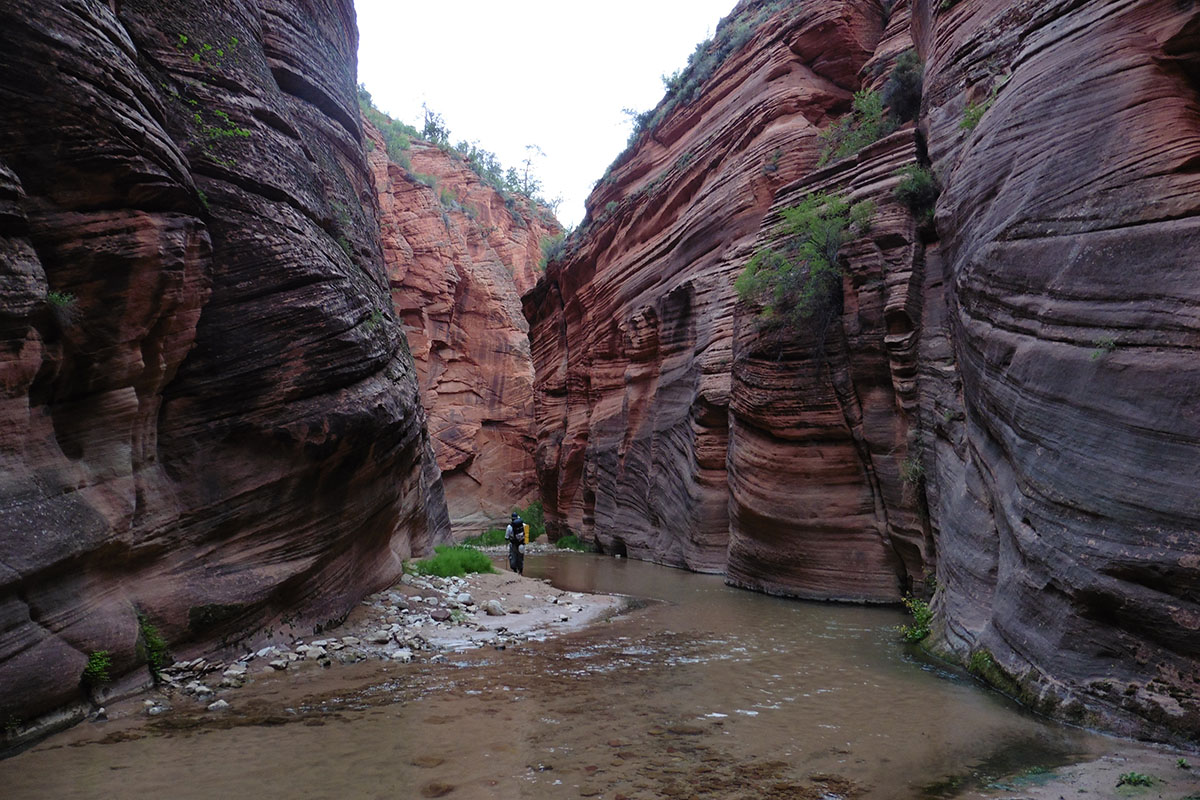 E Fork Virgin River, Zion