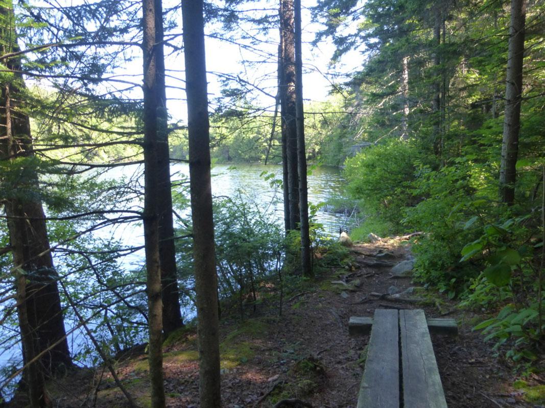Lakeside Hiking