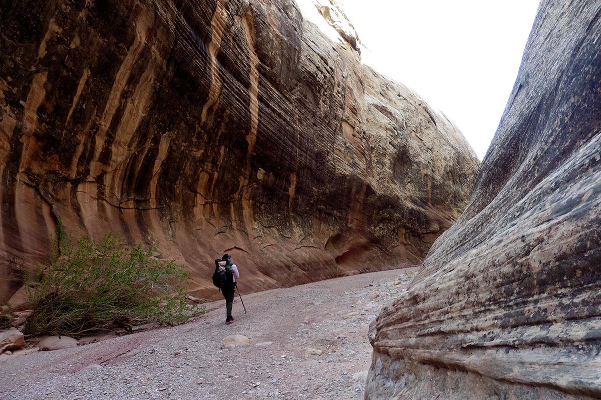 Lower Muley Twist Canyon