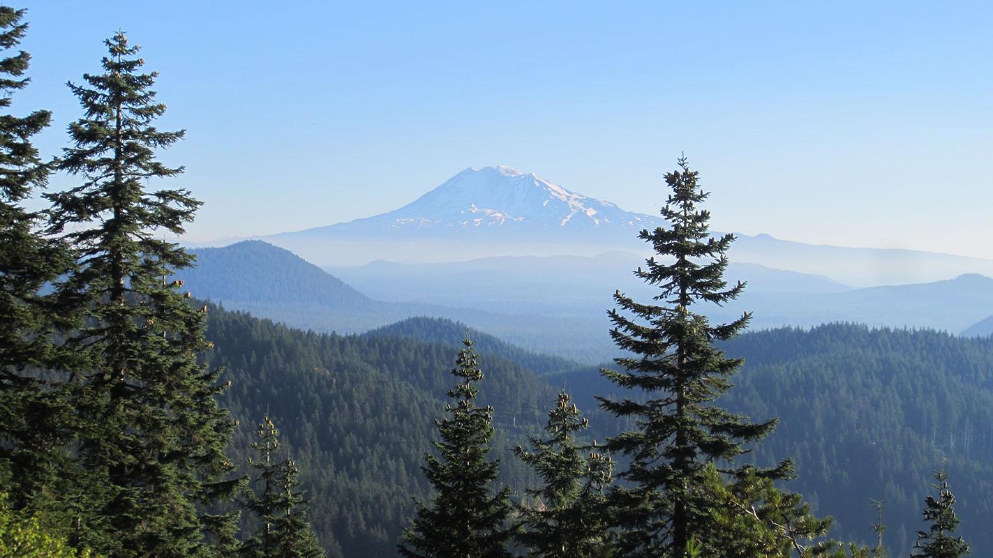 Mt Adams, PCT