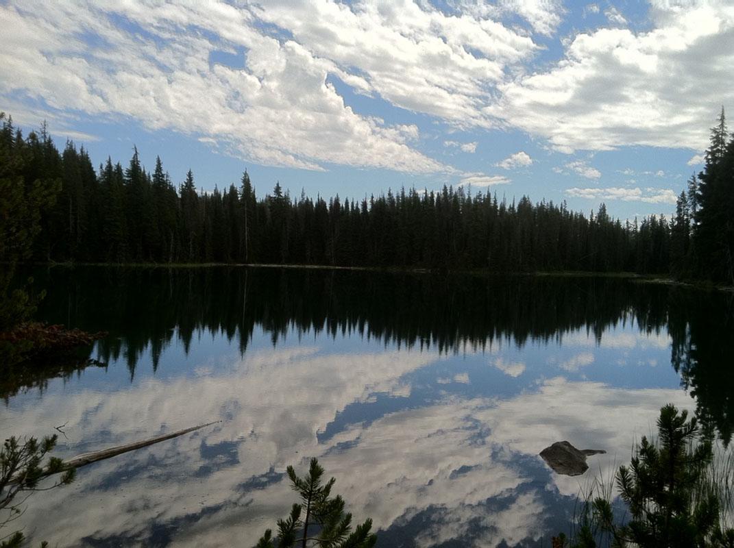 Oregon, PCT