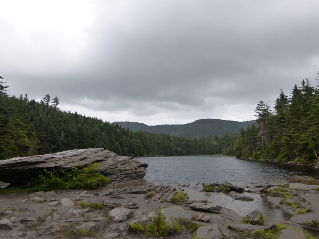 Sterling Pond in the rain.