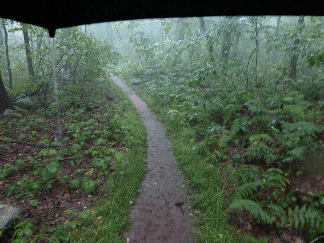 Rain on the Appalachian Trail