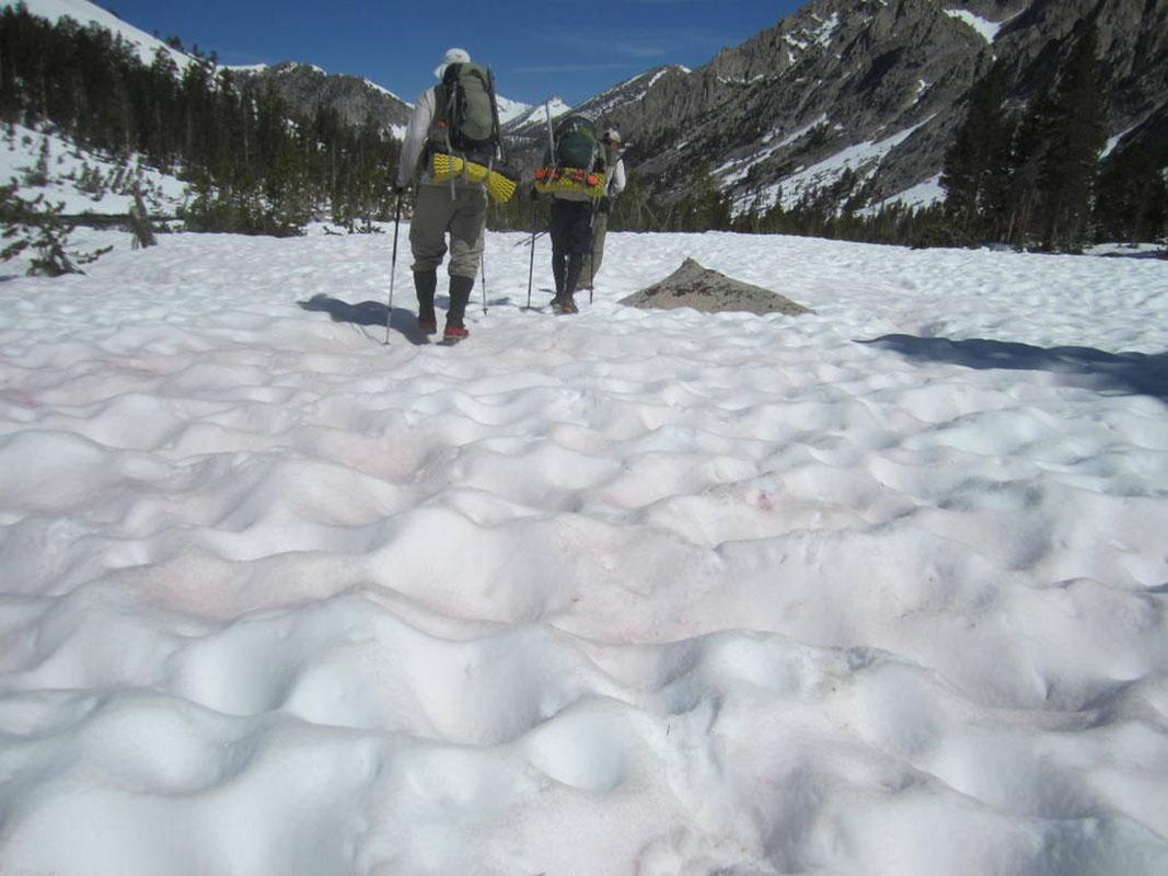 Sierra Suncups, PCT