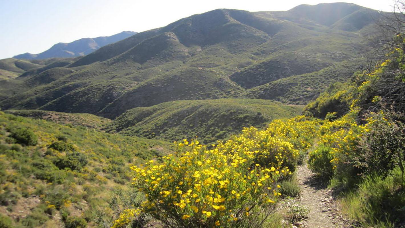 Southern California, PCT