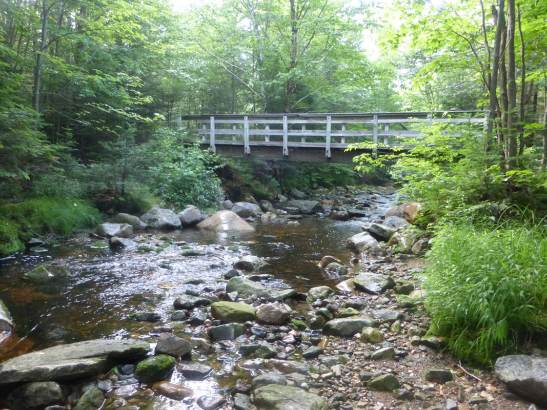 Stream view