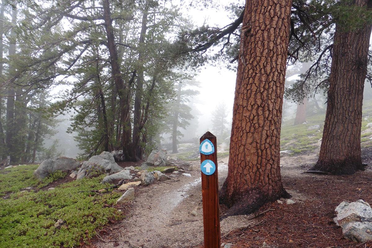 Tahoe Rim Trail blaze