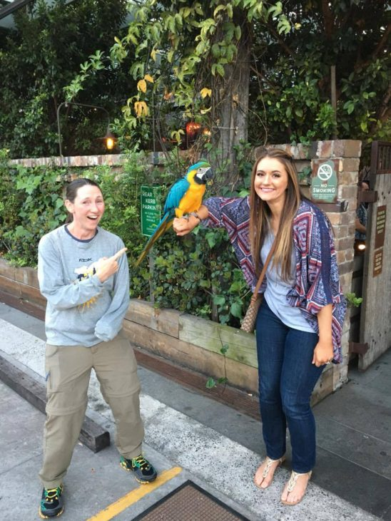 The restaurant had a parrot that anyone could just walk up and hold.