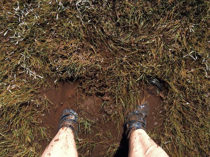 Day 112: Unpaused, Back On The Te Araroa!